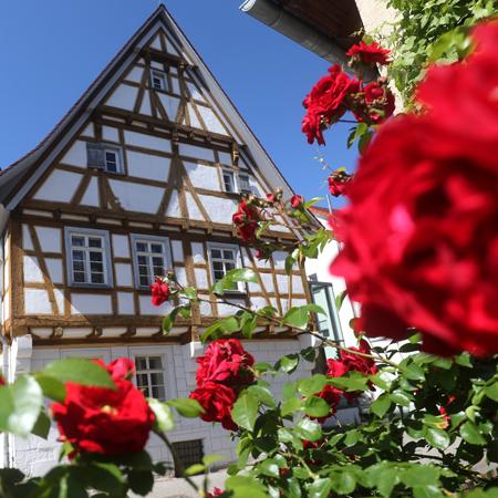 Haus mit Blumen davor