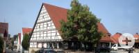 Fachwerkhaus im Vordergrund ein goßer Baum