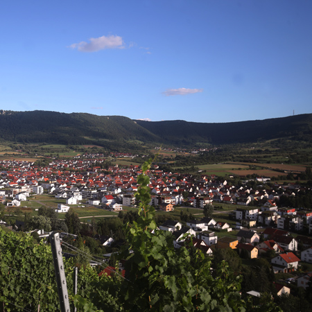 Blick auf Metzingen