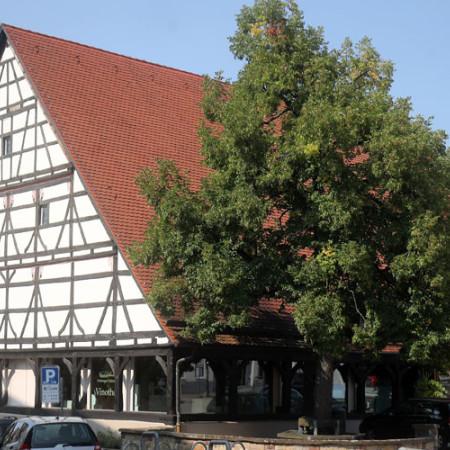 Vinothek auf dem Kelternplatz