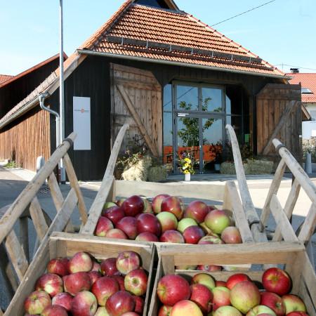 Im Vorgrund eine Kiste mit vielen roten Äpfelen, im Hintergrund ein altes Gebäude mit roten Dachziegeln