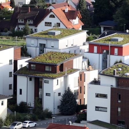 Bild Wohnbauplätz