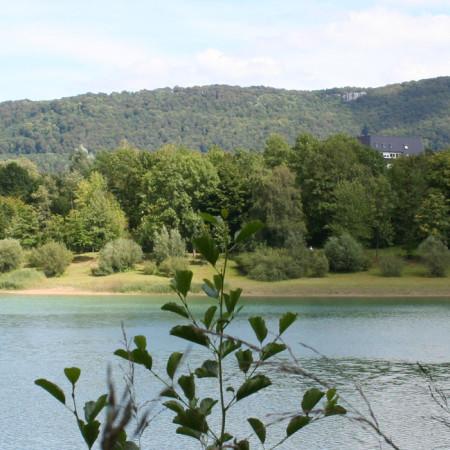 Vorne der Stausee, im Hintergrund Wald und Berge