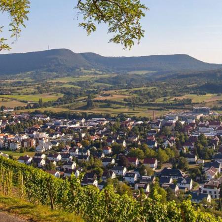 Blick auf Metzingen aus den Wein-Bergen